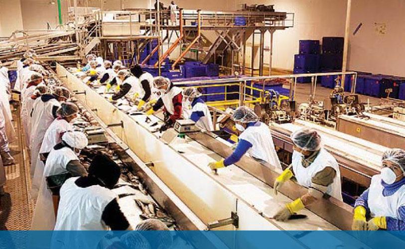 empresas-manufactureras